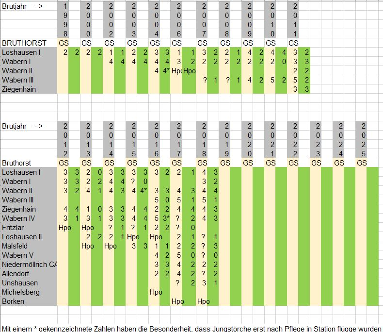 Störche Wabern und Schwalm-Eder-Kreis Statistik