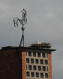 brutbeginn2kirche