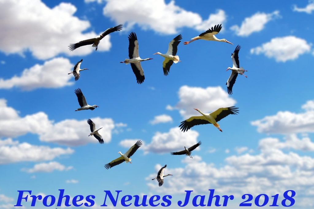 herzstoerche2018