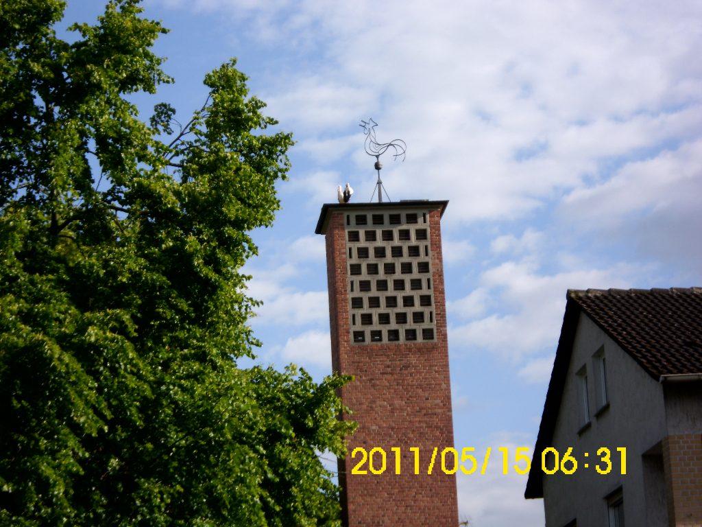 storchenpaar-kath-kirche2011
