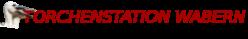 Störche Wabern, Weißstörche Wabern, Storch Wabern, Storchenstation, verletzter Storch, Störche Schwalm-Eder-Kreis, Störche Hessen, stoerche wabern, weissstorch, wabern, weissstoerche, weissstorch, storche, storchenpaar,