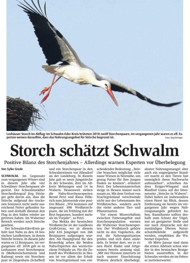 Störche 2018 Schwalm-Eder-Kreis
